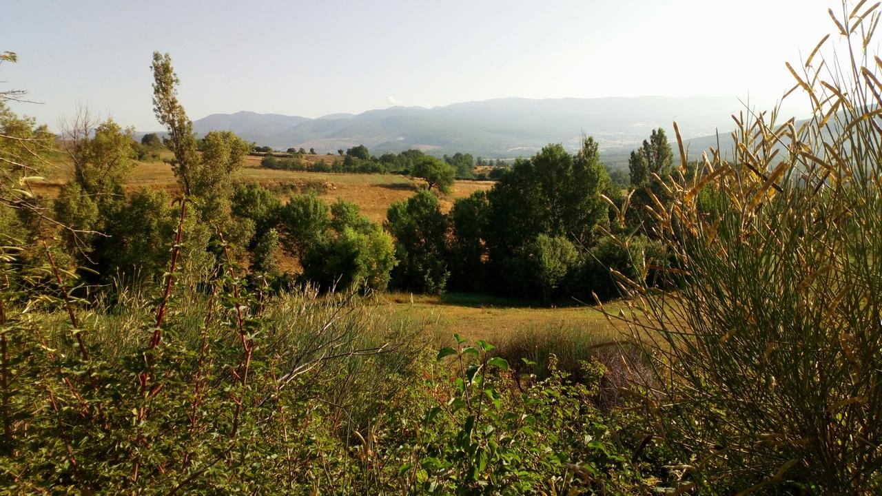 Alpes Haute Provence 2017 (1)